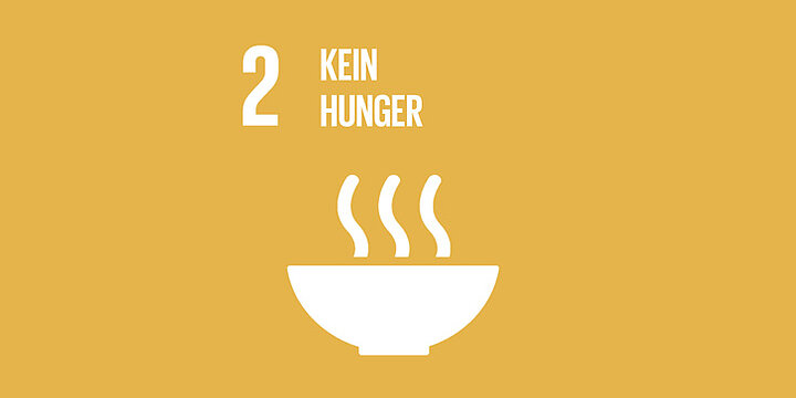 Icon SDG 2  - Hunger